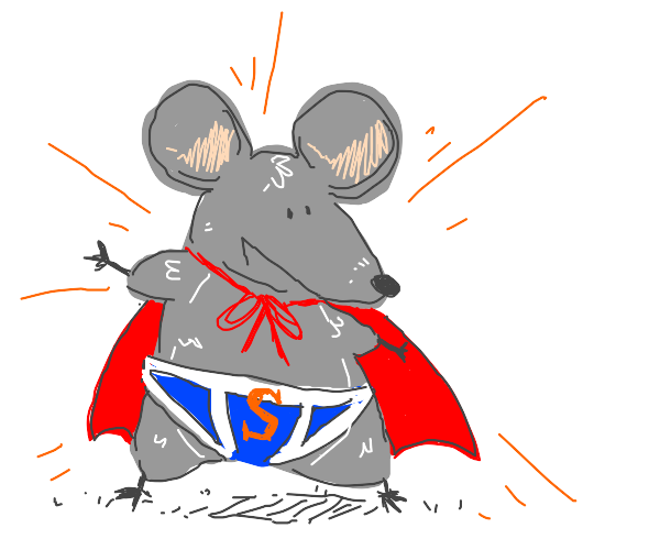 rat but it's a superhero