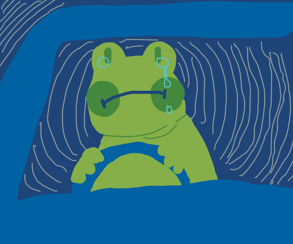 frog drives car in the void