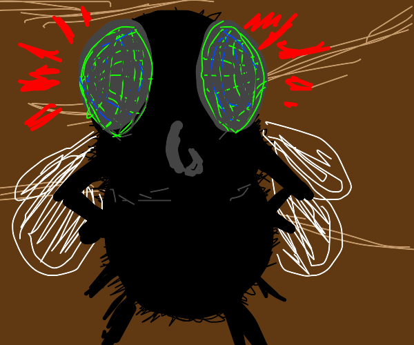 A giant fly that's upset