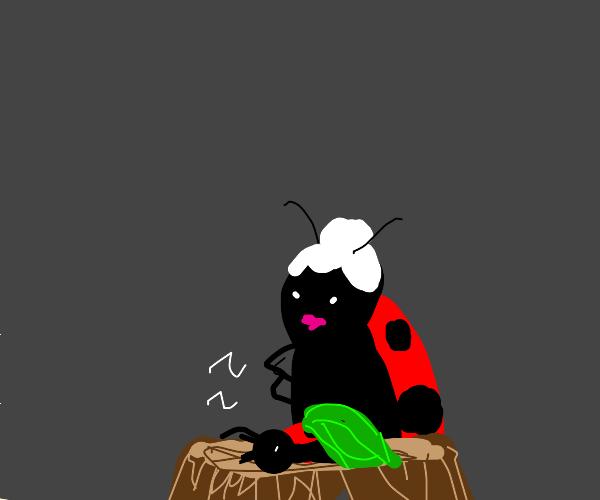 Old ladybug looking at child ladybug