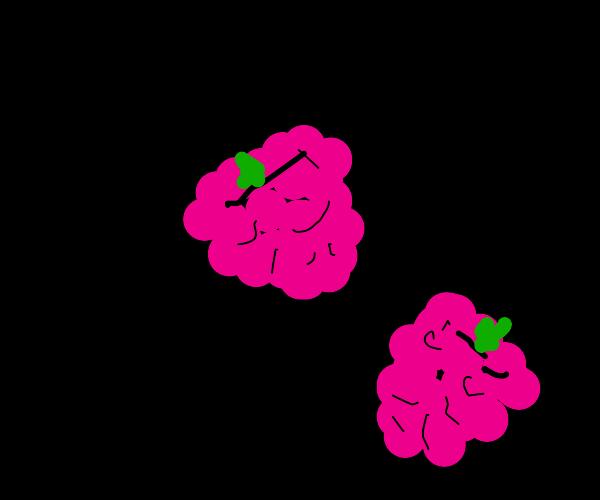 Rasberrys