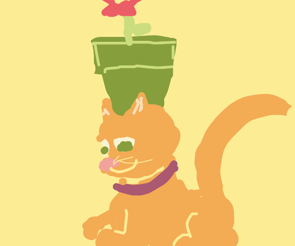 cat with a flower pot on their head