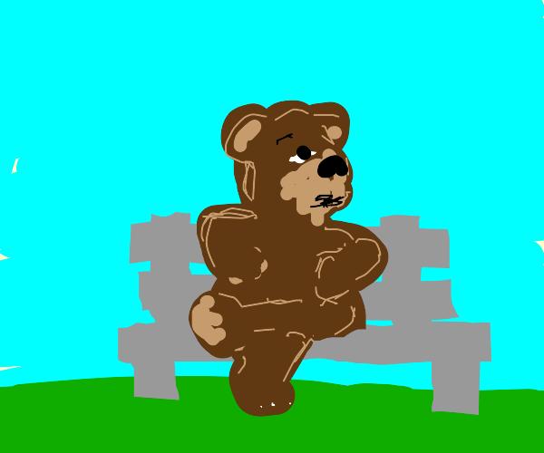 Bear sitting on a bench