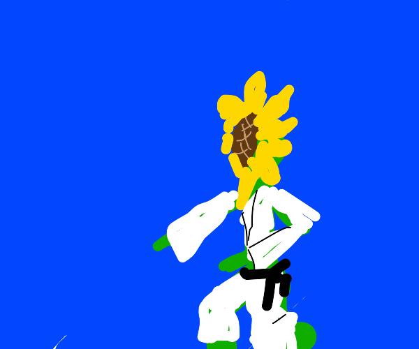 sunflower doing karate