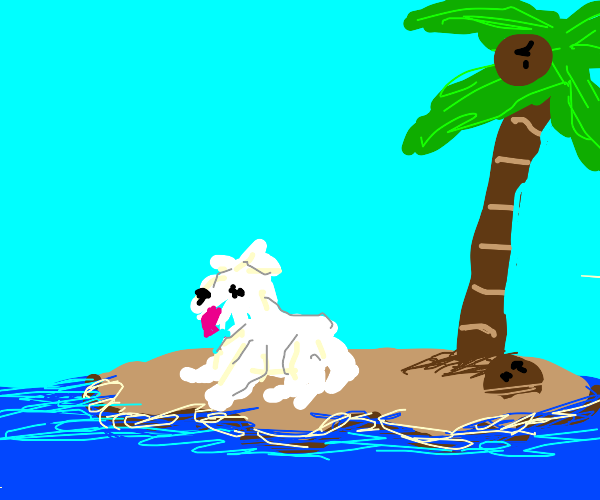 A sad dog stuck at sea