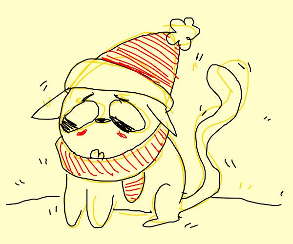 cold and sad yellow kitty