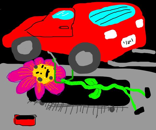 Flowers Mechanic