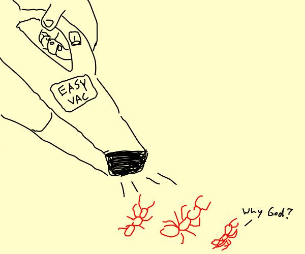 Ant Vacuuming