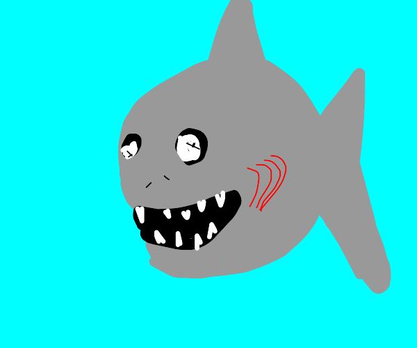 Chibi Kawaii Shark