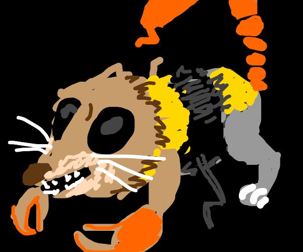 Dog cat bee scorpion monstrosity