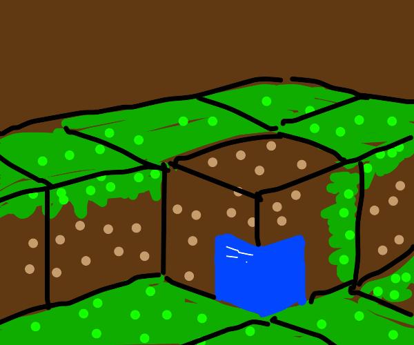 Broken grass block