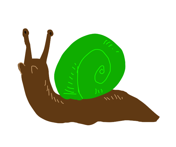 Brown snail green shell