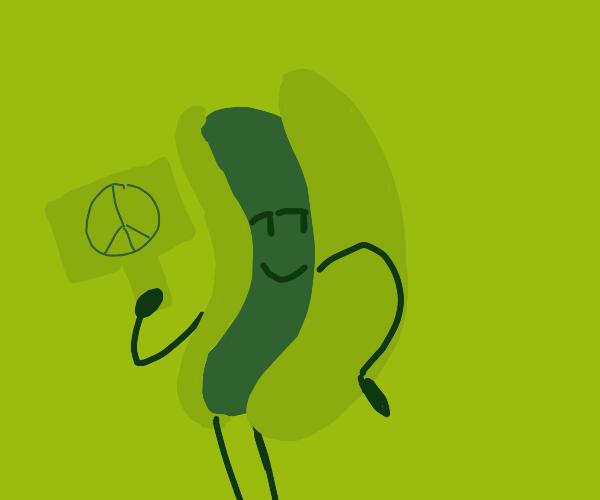 Hotdog Hippie Man