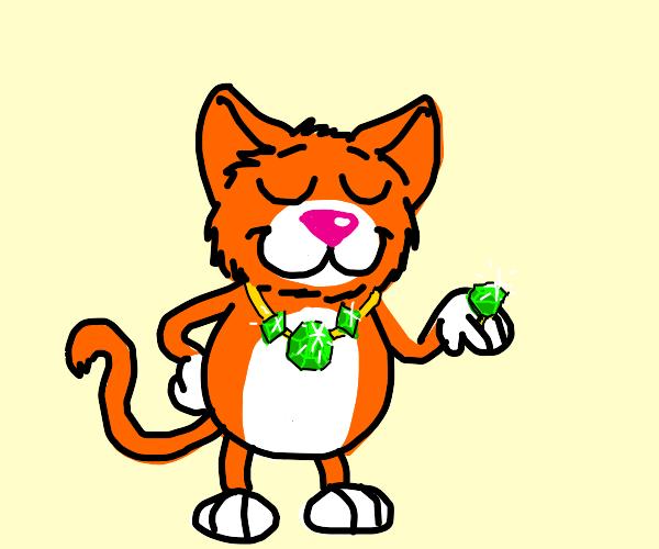 cat wearing green rocks