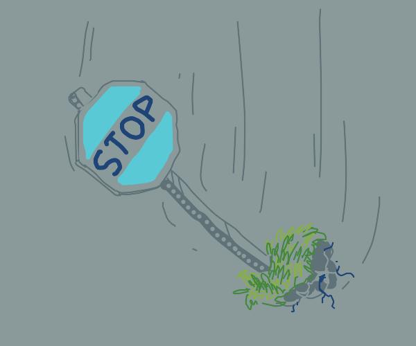 Stop fall