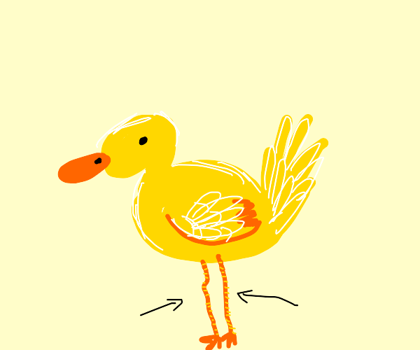 Duck has them skinny legs