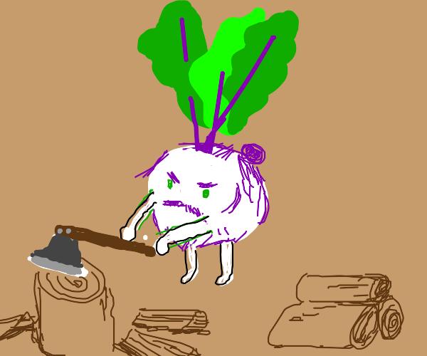 Turnip Carpenter