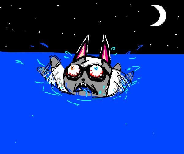 Raymond (Animal Crossing) drowning
