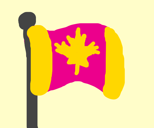 Pink and yellow flag