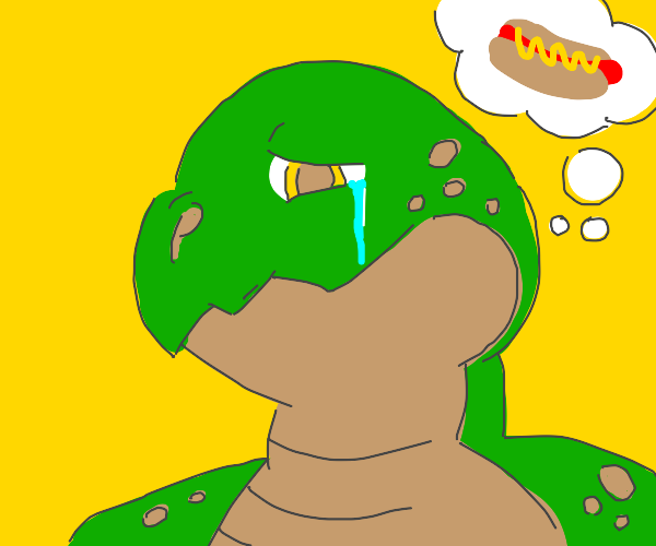 Turtle cries over hotdog