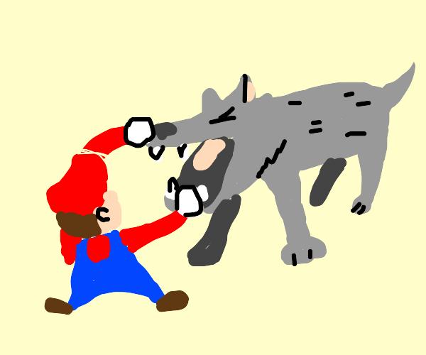 Mario vs a wolf?