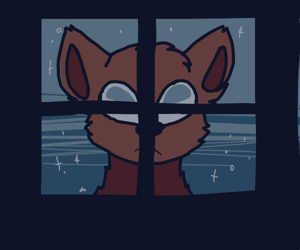 Doggie is stalking you. The window. Night.