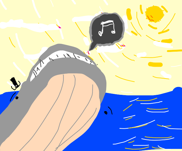 whale makes sound at the sun from the water