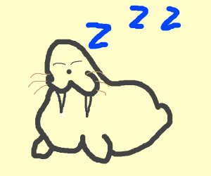 Walrus Snoring