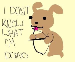 Dog licks bow