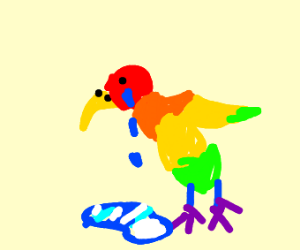 Multicoloured, miserable chicken
