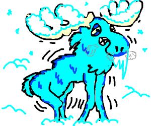 Freezing moose