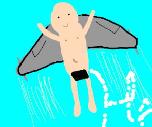 Man with aeroplane wings enjoys skywriting