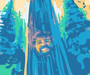 Bobby Ross Reincarnated as Happy Tree