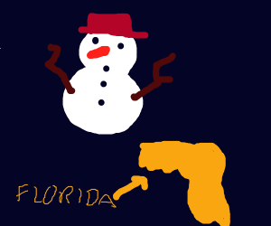 Snowman goes to Florida