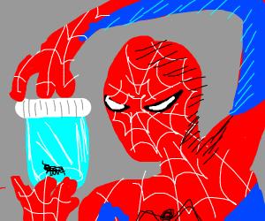 Spider-Man has captured a spider in a jar