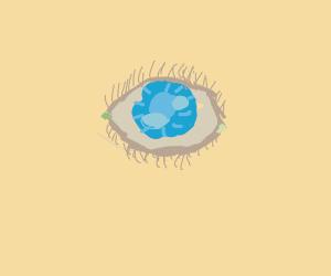 Draw a Eye