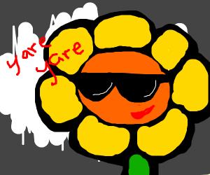 a sunflower looking badass w/ dark glasses