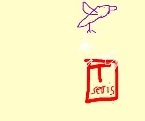 birds poop on t series