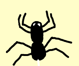 Angry Spider
