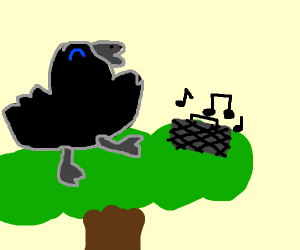Crow in tree jams out to music