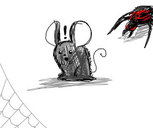 grey mouse's spider sense is tingling