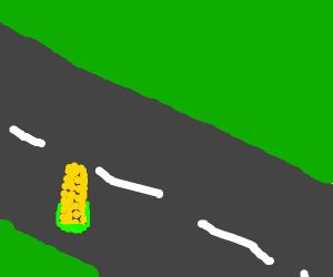 Corn crossing the Highway
