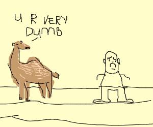 A camel makes a boy sad.