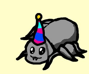 Partying Spider