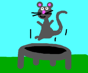 Mouse bouncing on a trampoline