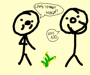 Chris is that a weed?