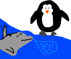 Dolphin saying hello to a penguin