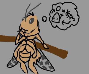grasshopper contemplates life on stick