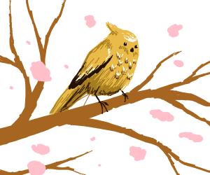 cute bird with sakura petals