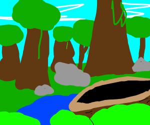 boat in the jungle
